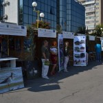 Festivalul International al Dunarii 2013 (1)